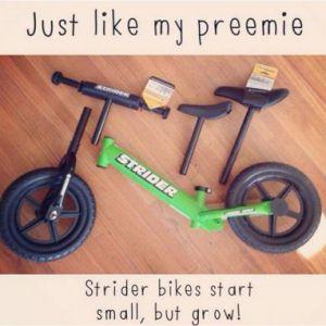 "Reseña a 3 Bicicletas de Balance ""Strider es algo completamente distinto"""